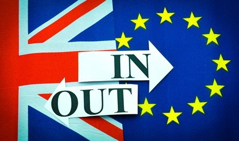 EU referendum poll – which way are you going to vote?